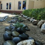 Rock garden and seculence garden