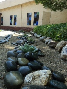 Rock garden and seculence garden